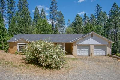 Grass Valley Single Family Home For Sale: 12091 Allison Ranch Road
