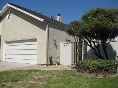 Manteca Single Family Home For Sale: 973 Camphor Street