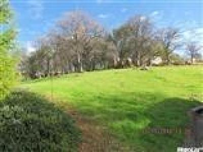 Auburn Residential Lots & Land For Sale: 9407 Upper Valley Road