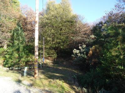 Sutter Creek Residential Lots & Land For Sale: Surrey Junction Lane