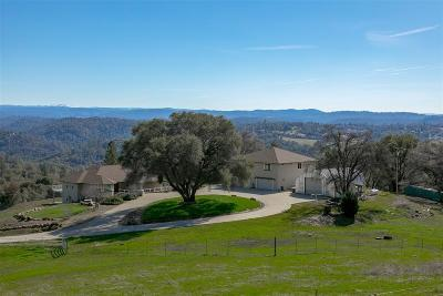 Placerville Single Family Home For Sale: 2500 Sand Ridge Road