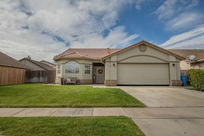 Turlock Single Family Home For Sale: 887 Zina Lane