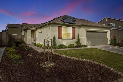 Manteca Single Family Home For Sale: 1107 Vesuvio Street