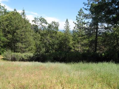 Foresthill Residential Lots & Land For Sale: 4115 Ampezo Place