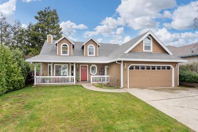 Placerville Single Family Home For Sale: 649 James Drive