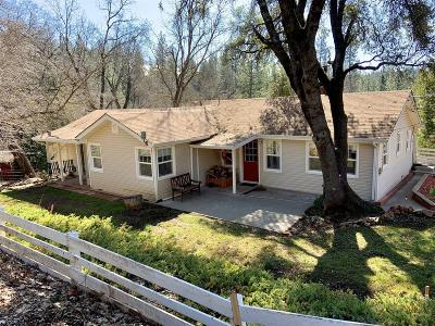 El Dorado County Single Family Home For Sale: 3536 Mining Brook Road