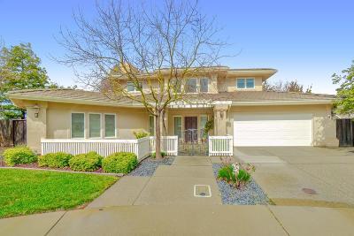 Davis Single Family Home For Sale: 427 Sandpiper Drive