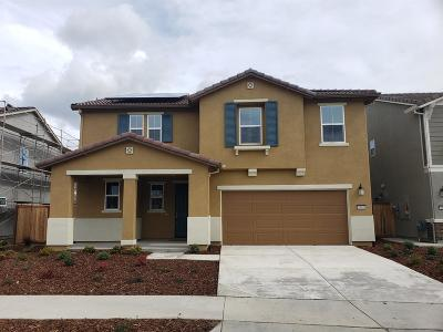 Elk Grove Single Family Home For Sale: 8409 Tolson Street