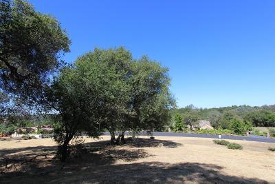 Auburn Residential Lots & Land For Sale: 2550 Vineyard Drive