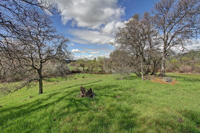Residential Lots & Land For Sale: 6535 Curtola Ranch Road