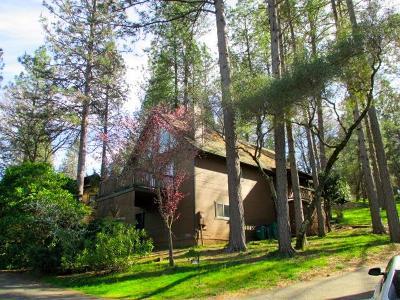 Nevada County Single Family Home For Sale: 19305 Bald Eagle Loop