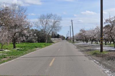 Escalon Residential Lots & Land For Sale: 27241 Vine Avenue
