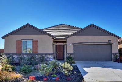 Elk Grove Single Family Home For Sale: 8548 Liquid Amber Way