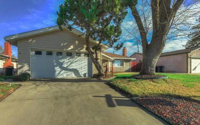 Roseville Single Family Home For Sale: 1029 Colnar