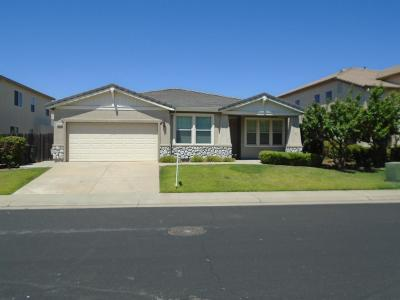 Roseville Single Family Home For Sale: 1808 Bottlebrush Circle