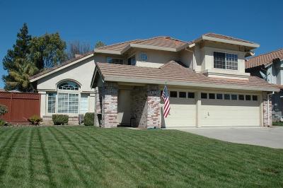 Tracy Single Family Home For Sale: 741 Petrig Street
