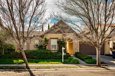 Mountain House Single Family Home For Sale: 470 West Fauna Avenue