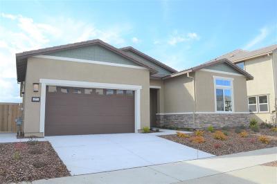 Sacramento Single Family Home For Sale: 471 Olivadi Way
