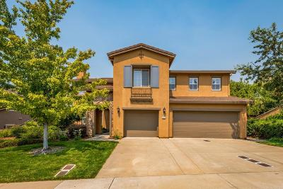 El Dorado Hills Single Family Home For Sale: 8144 Damico Drive
