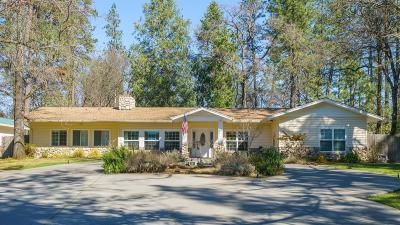 Meadow Vista Single Family Home For Sale: 1180 Meadow Vista Road