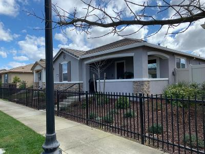 Sacramento Single Family Home For Sale: 4000 Hovnanian Drive