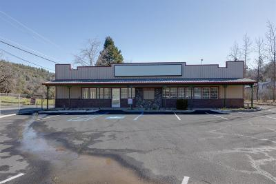 Placerville Commercial For Sale: 3030 Newtown Road