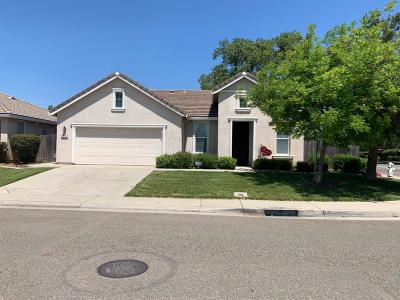 Elk Grove Single Family Home For Sale: 5417 Fox Trotter Way