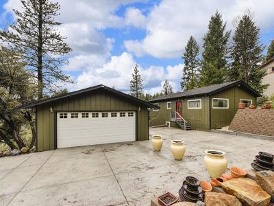 El Dorado County Single Family Home For Sale: 6522 Topaz Drive