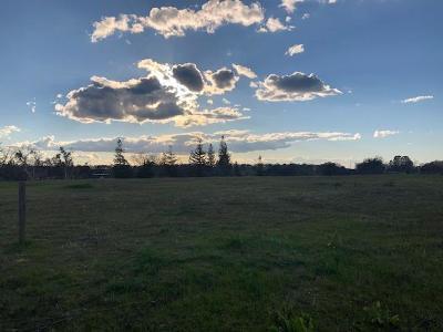 Sutter Creek Residential Lots & Land For Sale: 113 Mesa De Oro Circle