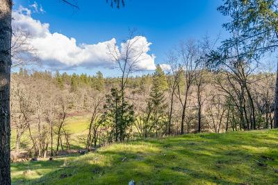 Colfax Residential Lots & Land For Sale: 1351 Peaceful Valley