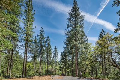 Placer County Commercial Lots & Land For Sale: 6781 Nugget Drive