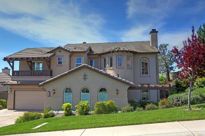 El Dorado Hills Single Family Home For Sale: 1601 Terracina