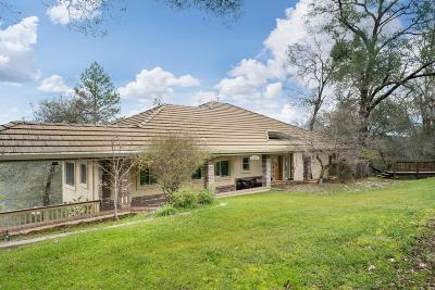 El Dorado County Single Family Home For Sale: 3859 Chariot Circle