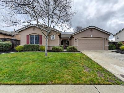 El Dorado Hills Single Family Home For Sale: 2325 Summer Drive