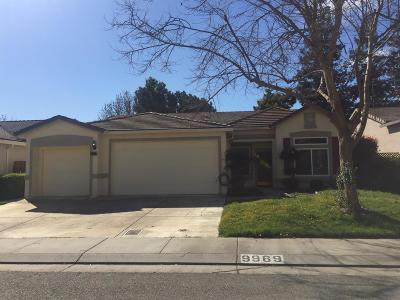 Stockton Single Family Home For Sale: 9969 River View Circle