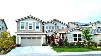 Rocklin Single Family Home For Sale: 950 Old Ranch House Ct