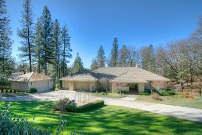 Foresthill Single Family Home For Sale: 19635 Eagle Ridge Road