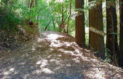 Santa Cruz Residential Lots & Land For Sale: Idlewild
