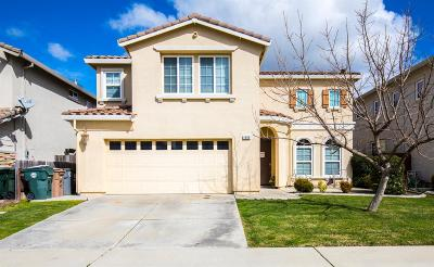 Elk Grove Single Family Home For Sale: 4909 Van Steyn Court