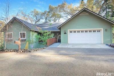 El Dorado County Single Family Home For Sale: 2935 Mount Danaher Road
