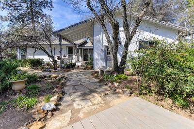 El Dorado County Single Family Home For Sale: 2639 Sweetwater Trail
