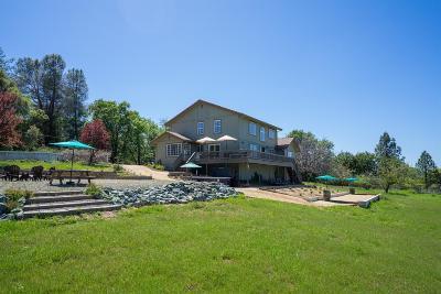El Dorado County Single Family Home For Sale: 7708 Fairplay Road