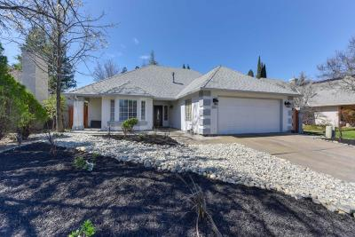 Elk Grove Single Family Home For Sale: 9378 Foulks Ranch Drive