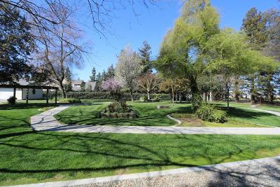 Modesto Single Family Home For Sale: 5482 Yosemite