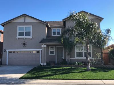 Elk Grove Single Family Home For Sale: 4816 Steppe Court