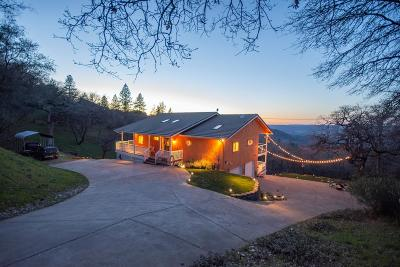 Placerville Single Family Home For Sale: 1151 Oro Loma Drive