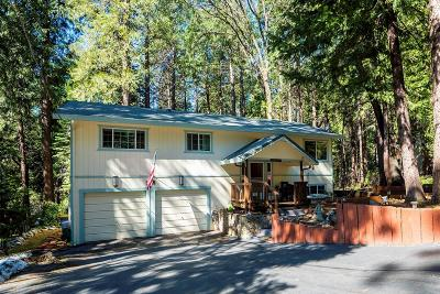 El Dorado County Single Family Home For Sale: 2876 Marilyn Drive