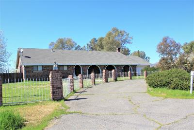 Sacramento Single Family Home For Sale: 8364 Chester Drive
