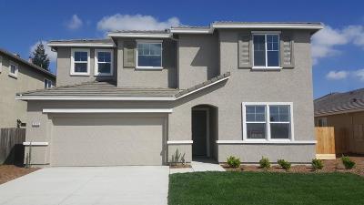 Livingston Single Family Home For Sale: 2173 Kapreil Way