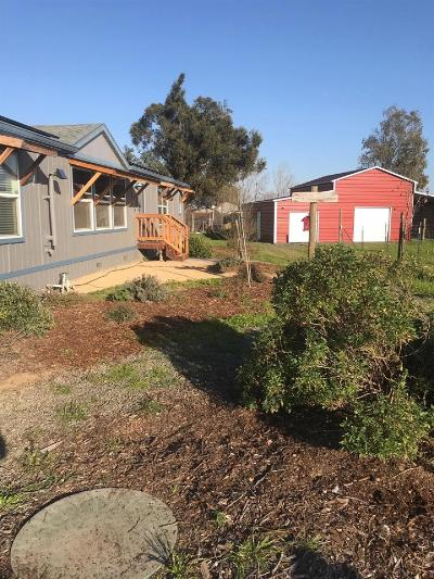 Vacaville Single Family Home For Sale: 5516 Weber Road